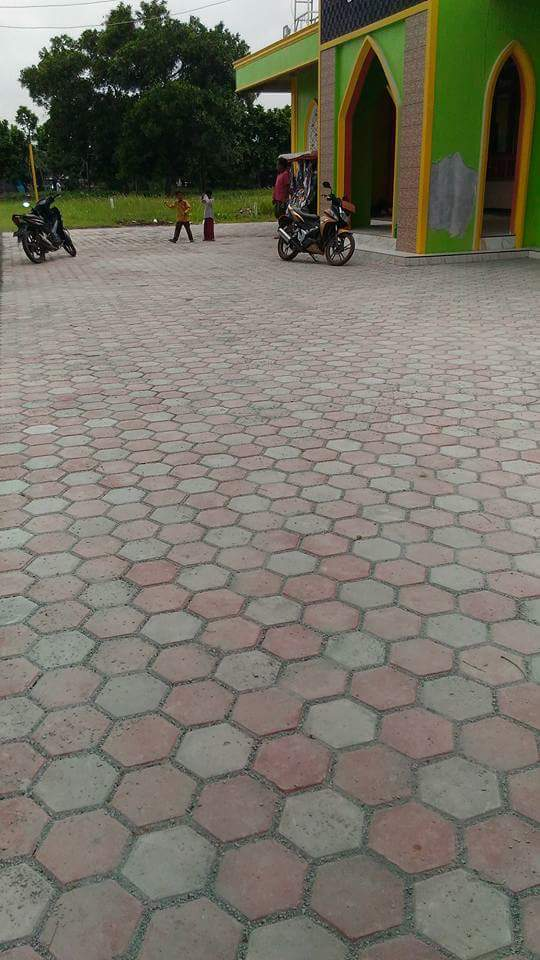Paving Block Hexagon (Segienam)