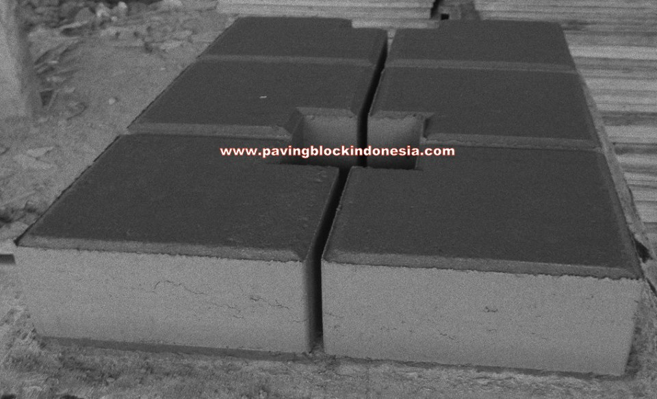Paving Block Model Ubin Coak