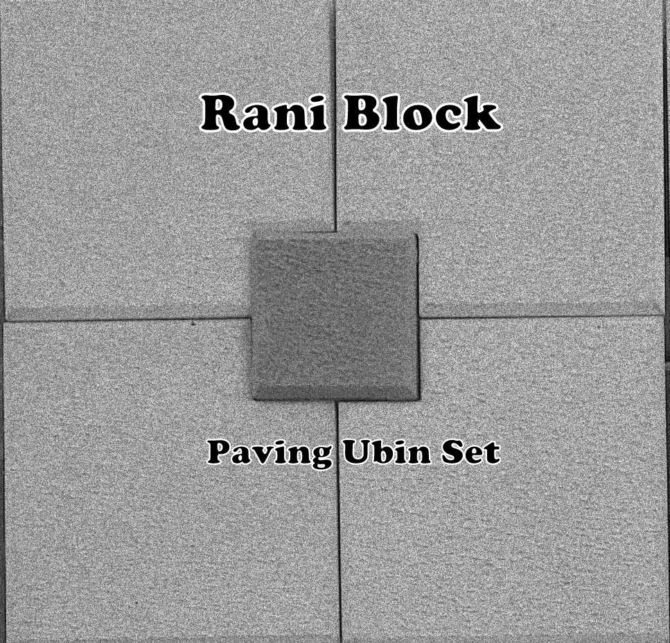 Paving Block Model Ubin Set Rani Block