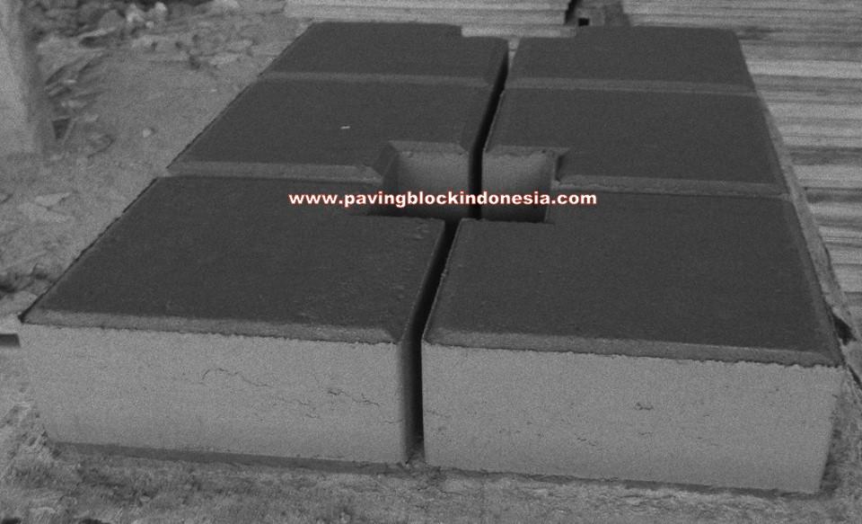 Paving Block Model Ubin Coak