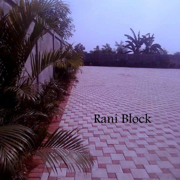 Paving Block Ubin Kubus Rani Block